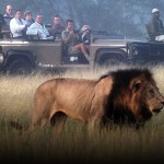 Tauck Luxury Escorted Tours 2017 – South Africa: An Elegant Adventure